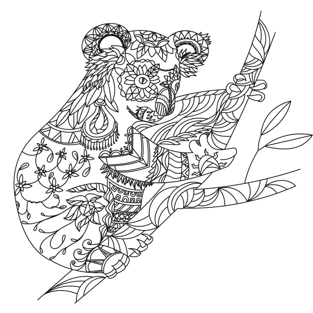 coala para colorear