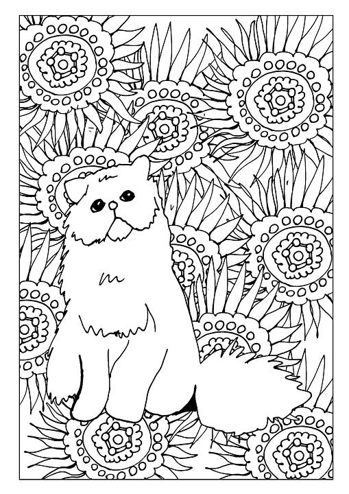 gato para colorear