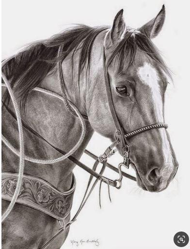 Cómo dibujar un caballo paso a paso
