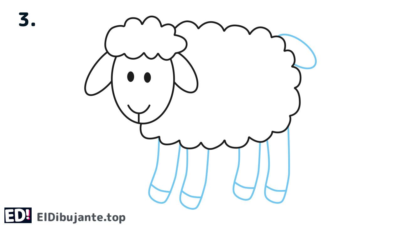 como dibujar el cuerpo de una oveja