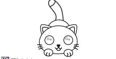 ¿Cómo dibujar un gato fácil?