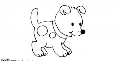 portada perro facil