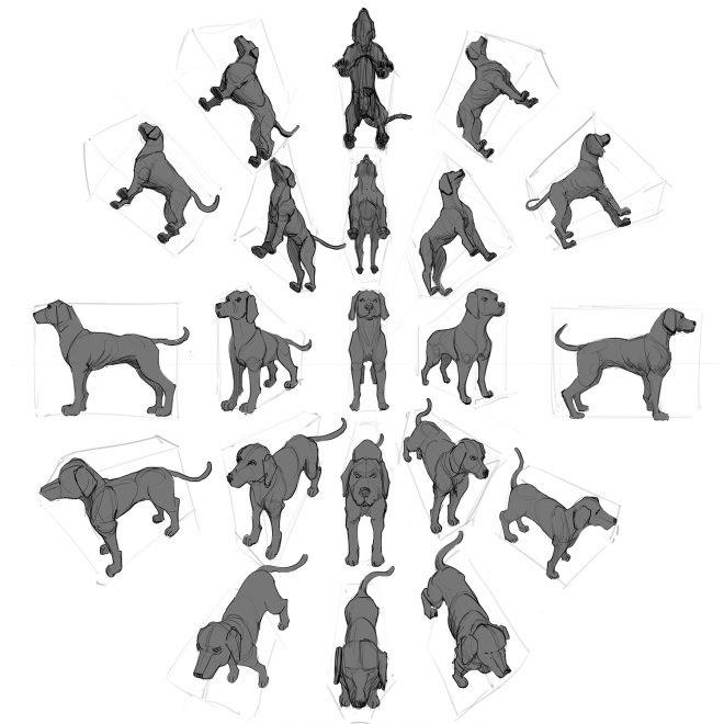 dibujo de perros en perspectiva a lápiz