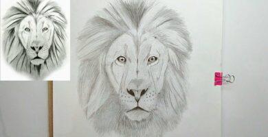 sombreado del rostro de un leon a lapiz